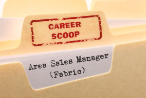 Career Scoop file, on what it's like to work as an Area Sales Manager (Fabric)