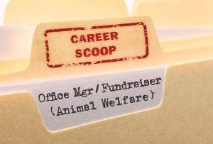 Career Scoop file, on what it's like to work as an Office Manager / Fundraiser in Animal Welfare