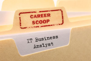 Career Scoop file, on what it's like to work as an IT Business Analyst