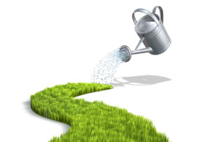 Picture of a watering can growing a new path, as an analogy for growing your own career