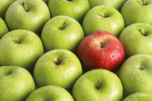 Photo of one red apple, amongst many green apples - a metaphor for standing out in job interviews