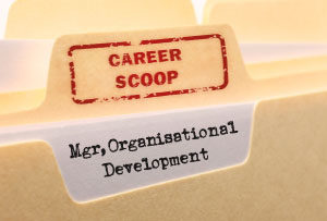 Career Scoop File, on what its like to work as an Organisational Development Manager